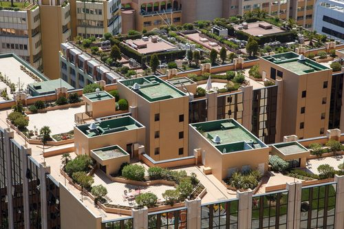 גג ירוק - גגות ירוקים